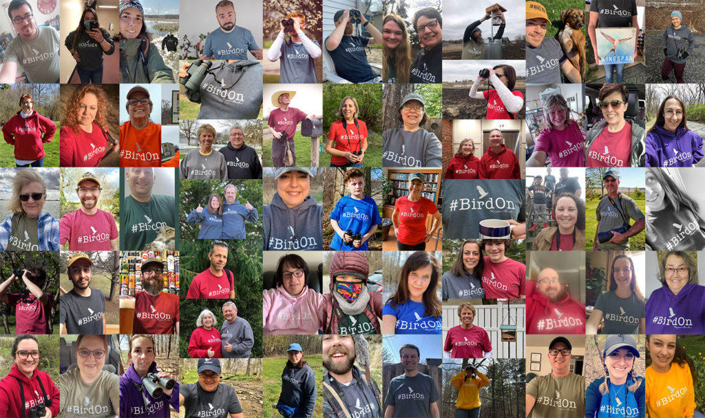 rogue birders community